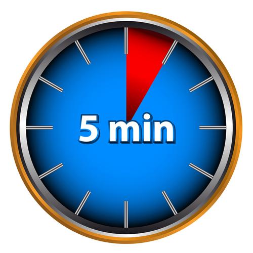 set a timer for 5