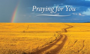 Bible News: Praying For You Today | By David McCasland [ODB]