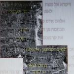 bible's leviticus