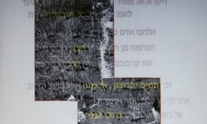 Archaeologists Discover 1,700 Years Old Bible's Leviticus