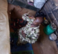 Nigerian Soldier Who Sleeps In Grave Fighting Boko Haram Thanks God For Protection